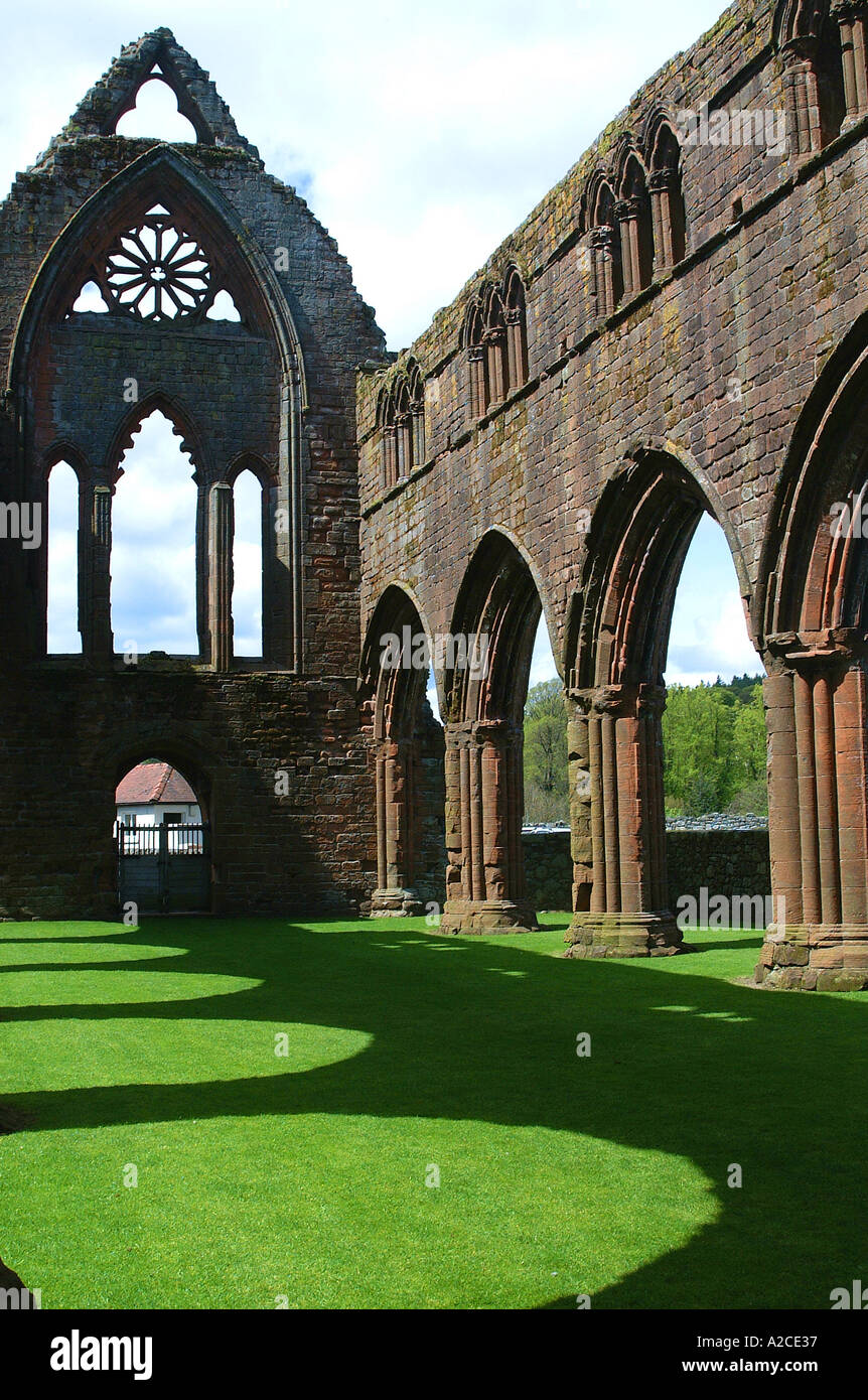 sweetheart abbey scotland scottish dumfries dumfrieshire dumfries and galloway architecture building old derelict ruin ancient h - Stock Image