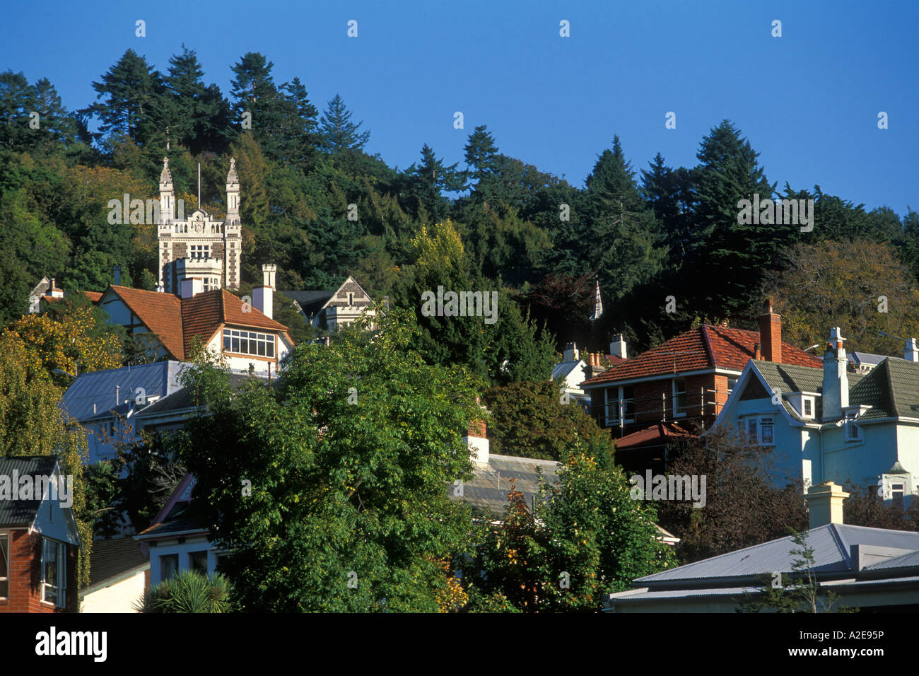 Part of the leafy historic Roslyn district in the hills behind the city centre of Dunedin Otago South Island New - Stock Image