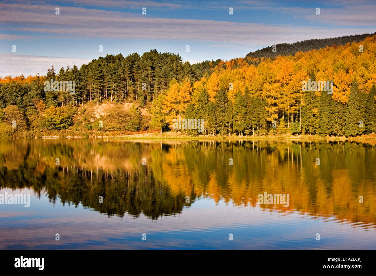 Autumn Reflections in Trentabank Reservoir, Macclesfield Forest, Cheshire, England, UK - Stock Image