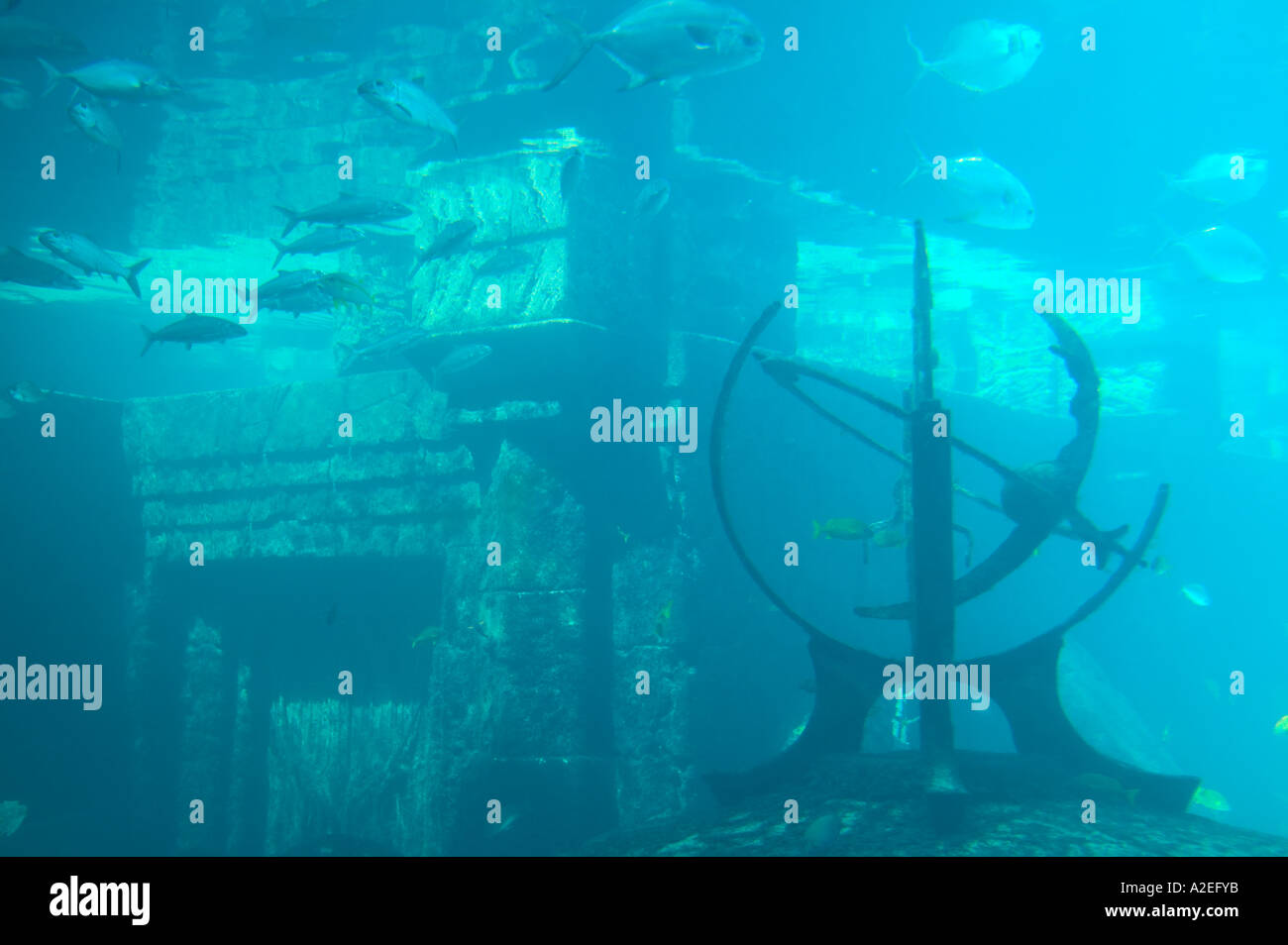 BAHAMAS, New Providence Island, Nassau: Atlantis Resort & Casino / Paradise Island, Ruins of Atlantis, Tropical Aquarium - Stock Image