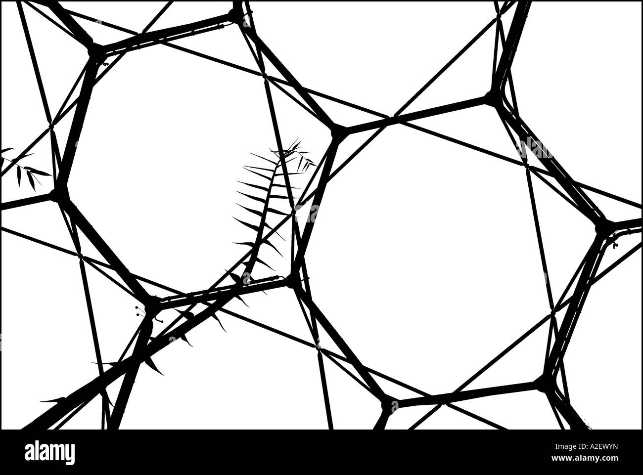 Close-up of the dome roof, Eden Project, Cornwall, England - Stock Image