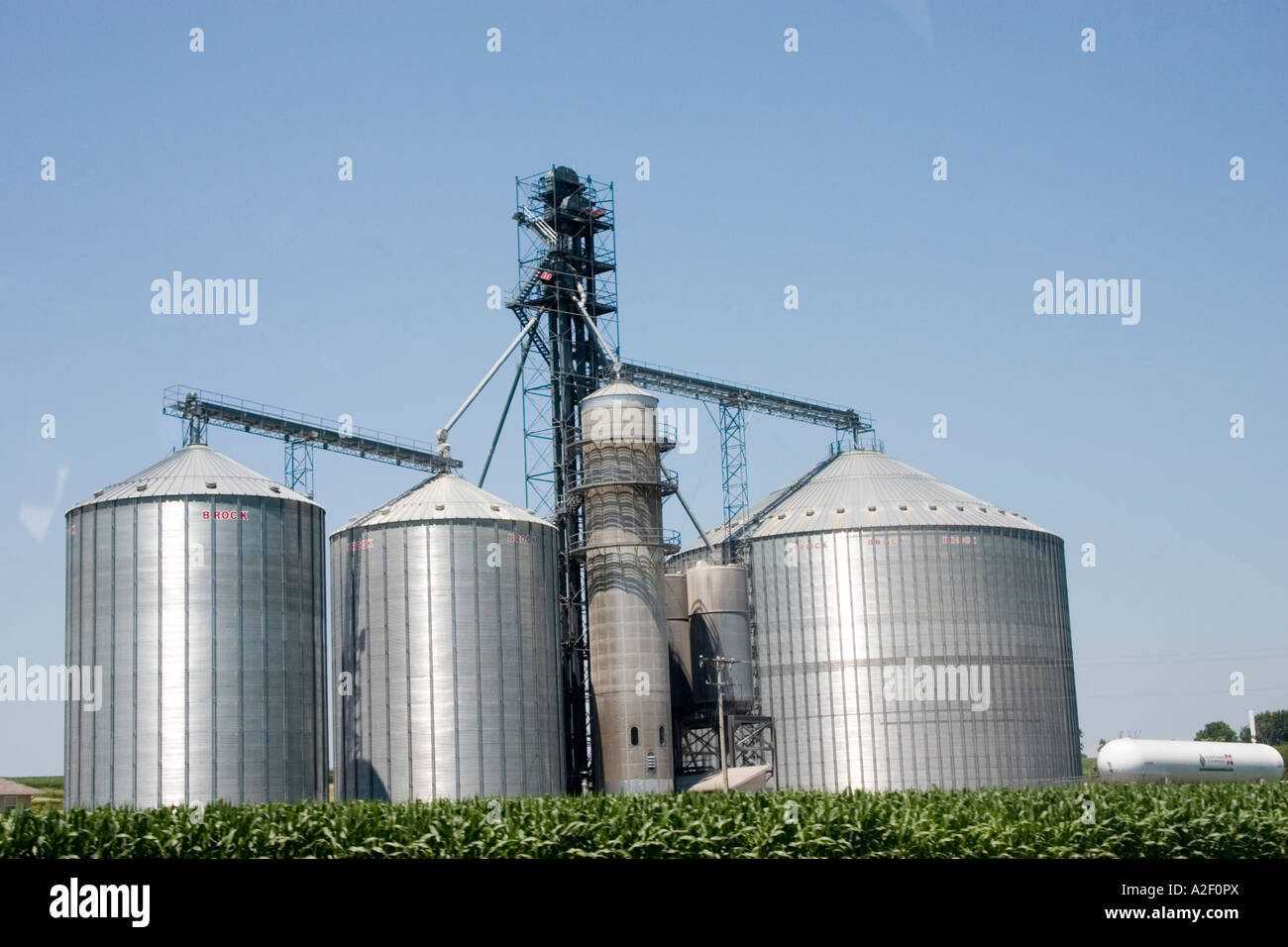 Large capacity silos for grain storage. Hillsboro Wisconsin USA - Stock Image
