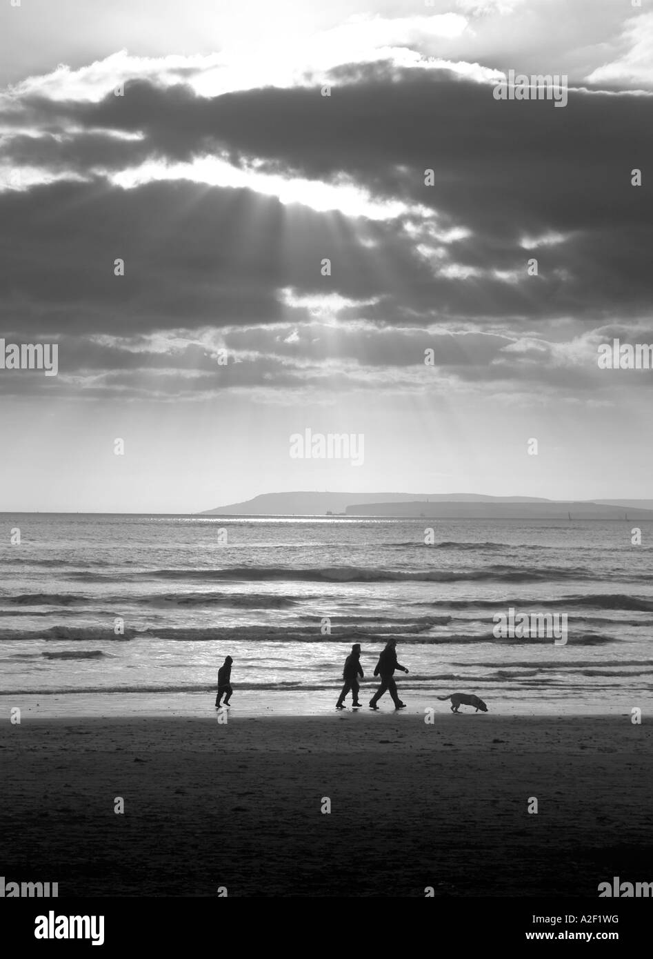 Family walking their dog on the beach - Stock Image