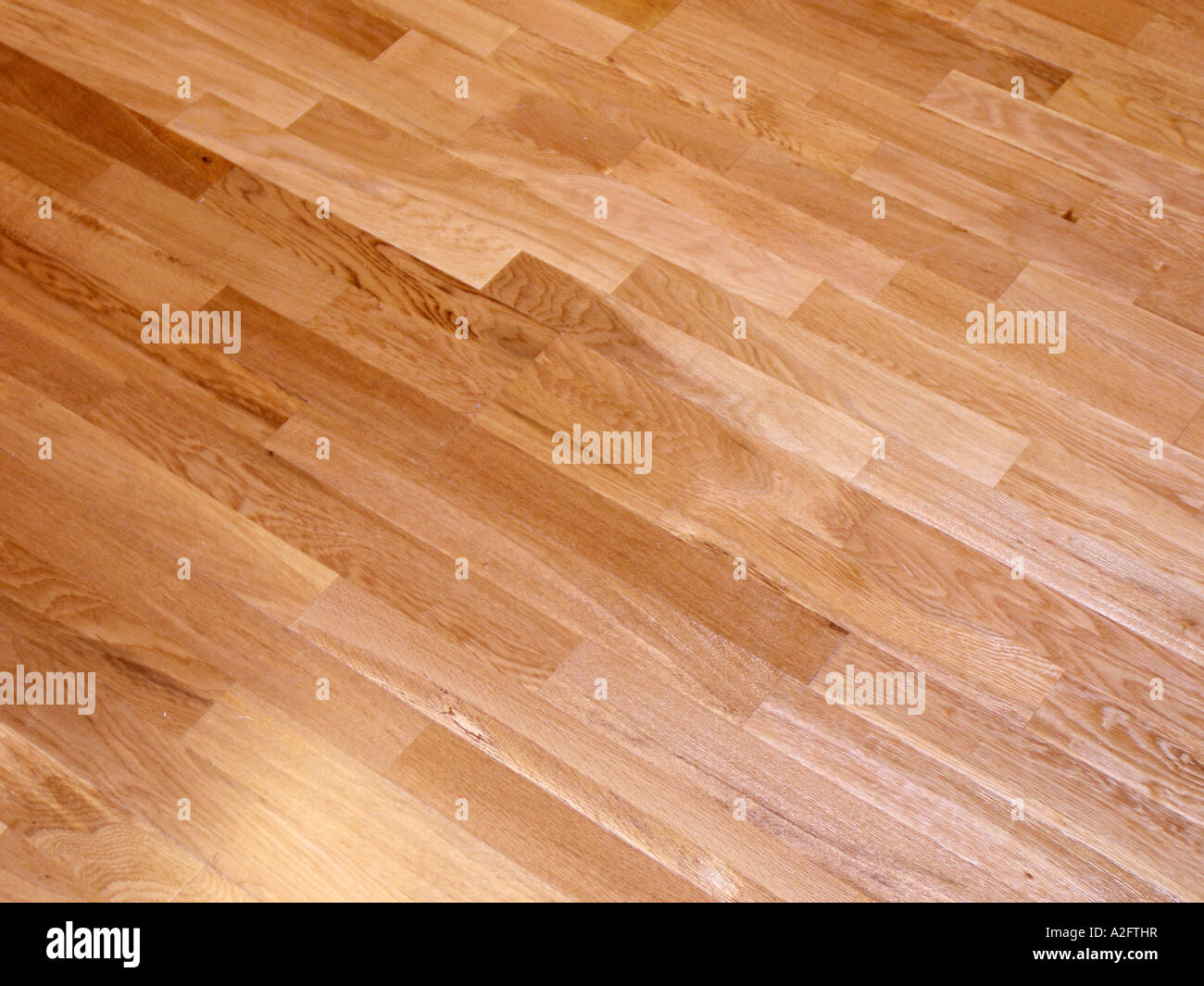 Laminate Wood Wooden Floor Flooring Oak Timber Trendy Stock
