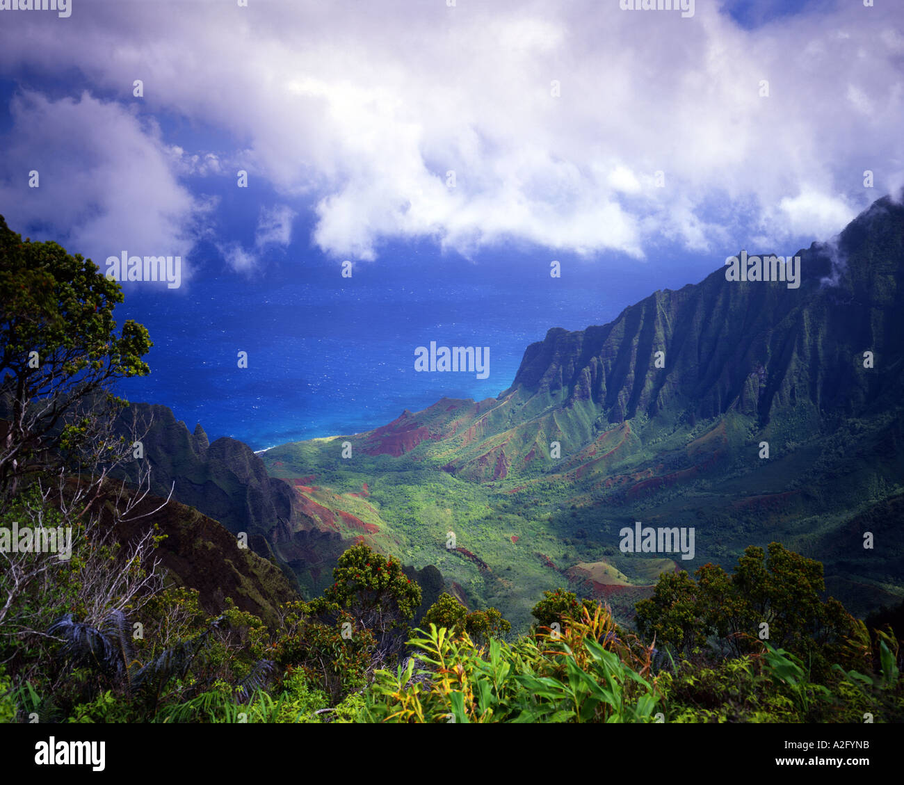 USA - HAWAII: Kokee State Park in Kalalau Valley on the island of Kauai - Stock Image