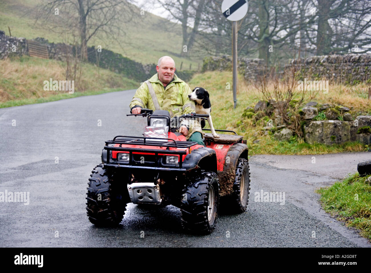Man's best friend. Yorkshire Dales, - Stock Image