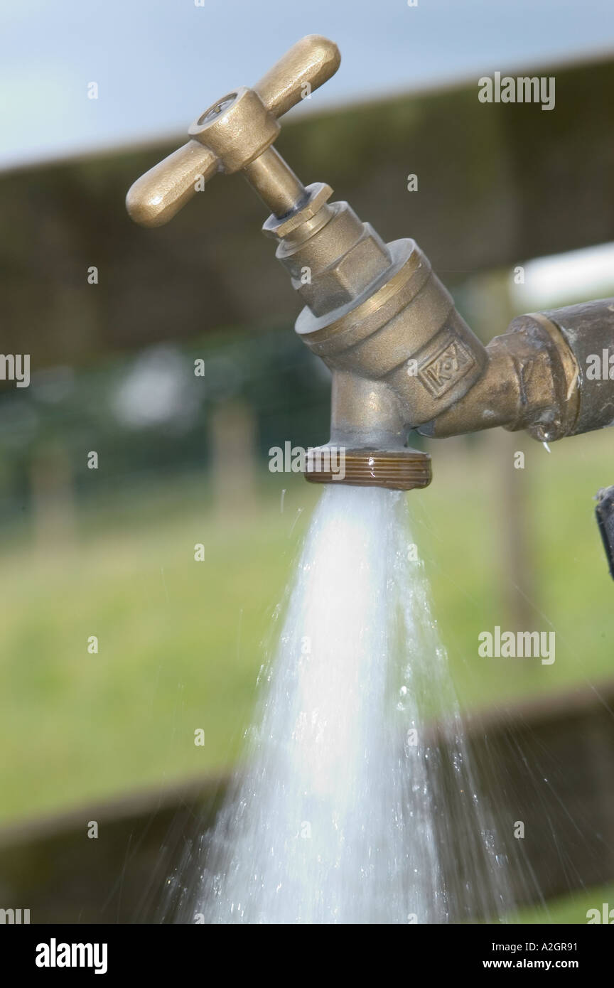 Running water tap in field for animals and outside use - Stock Image