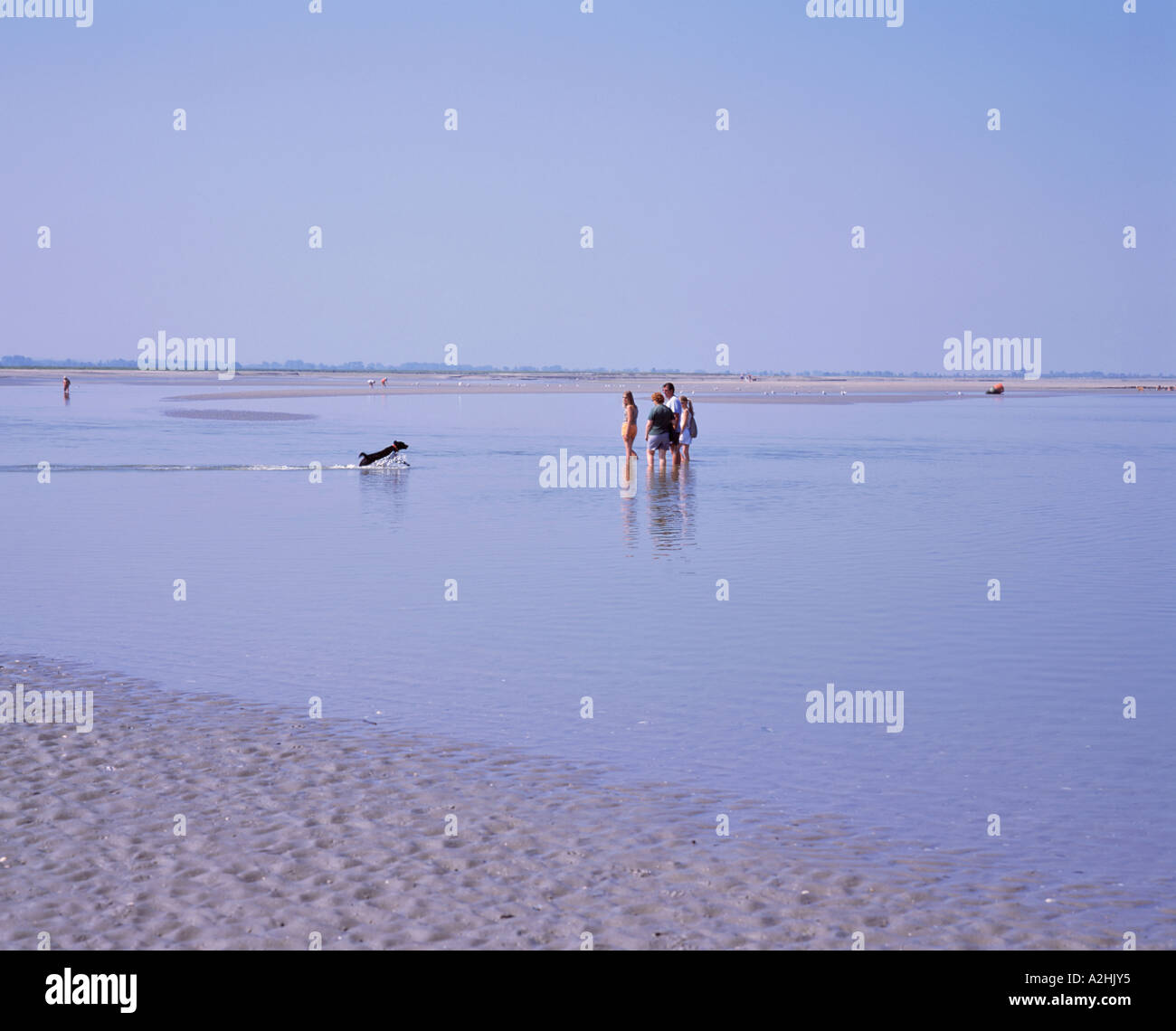 FRANCE PICARDY BAIE DE SOMME  LE CROTOY Stock Photo