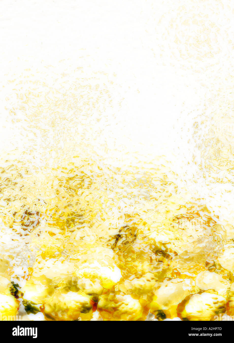 Portrait shot of cod liver oil capsules shot through textured glass - Stock Image