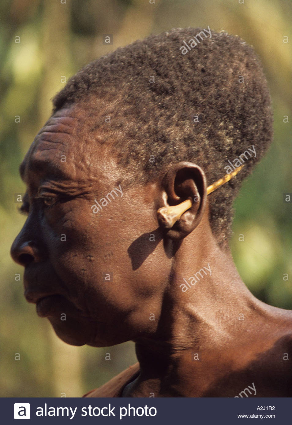 Upper Class Mangbetu woman with elongated skull wears a monkey bone through her ear - Stock Image
