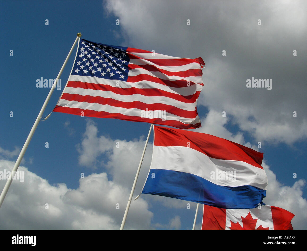 American Dutch and Canadian Flags flying against blue skies