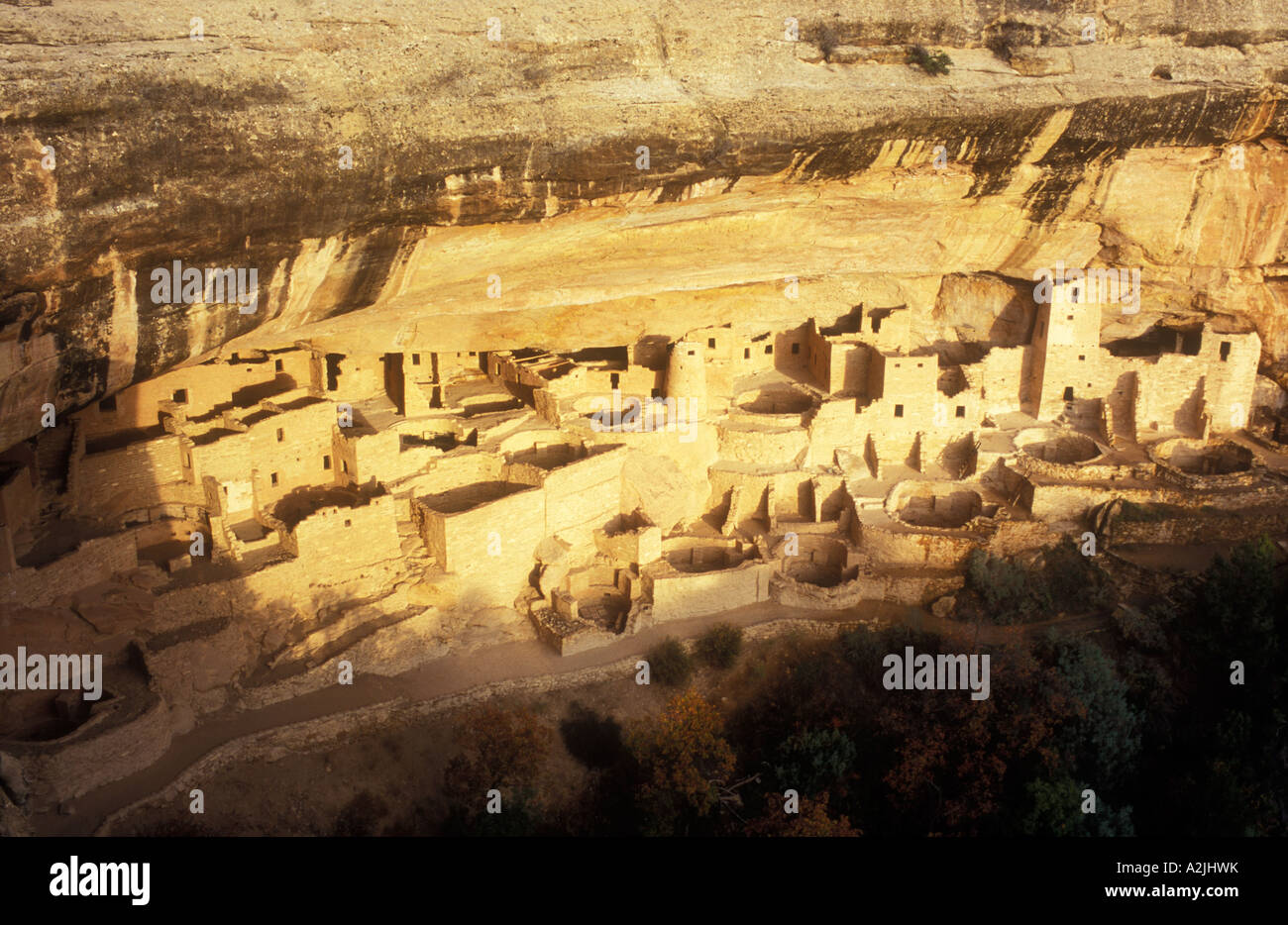 USA Colorado Mesa Verde National Park Cliff Palace cliff dwellings of the Anasazi A D 1200 - Stock Image