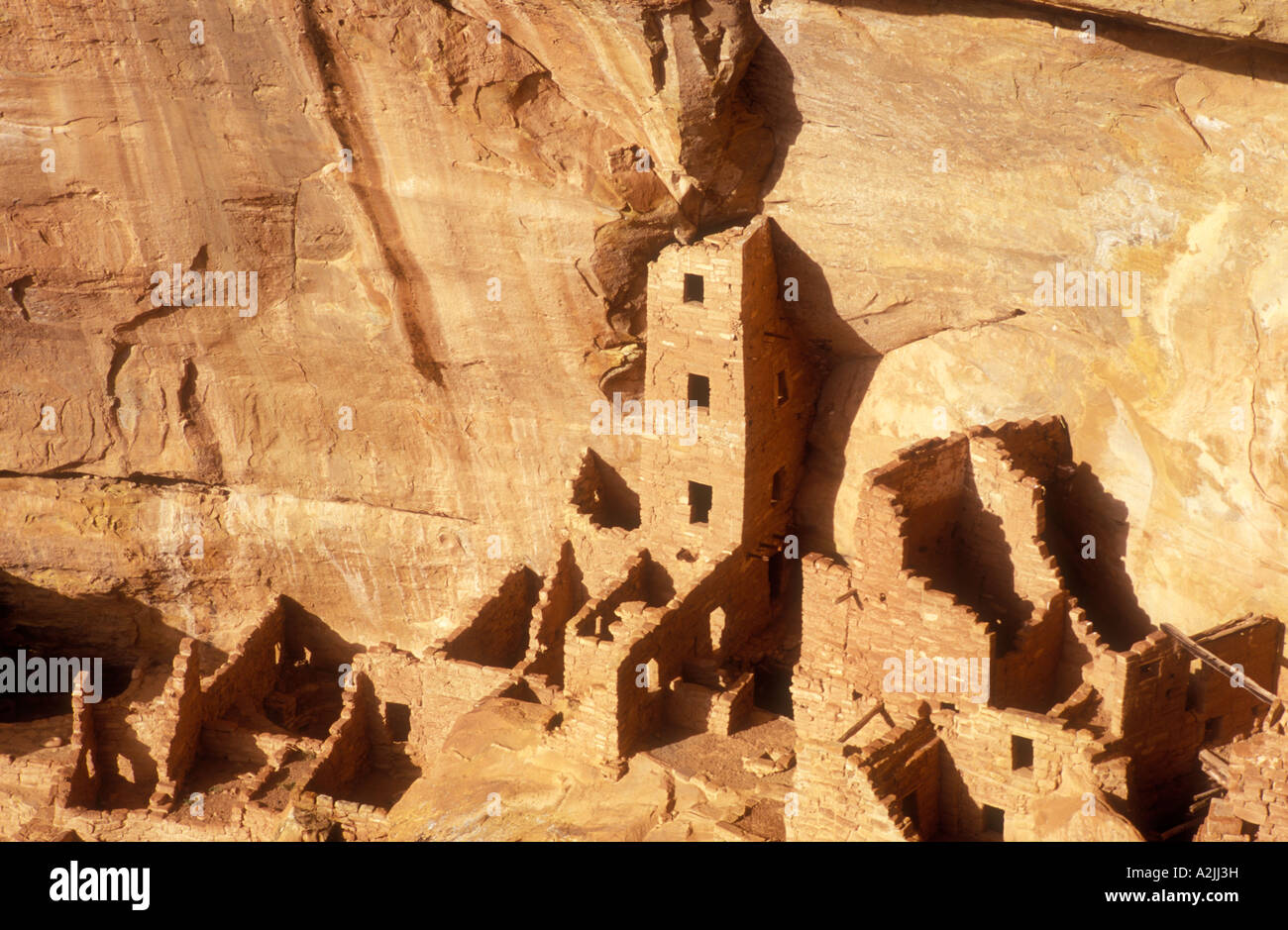 USA Colorado Mesa Verde National Park Square Tower House cliff dwellings of the Anasazi A D 1200 - Stock Image