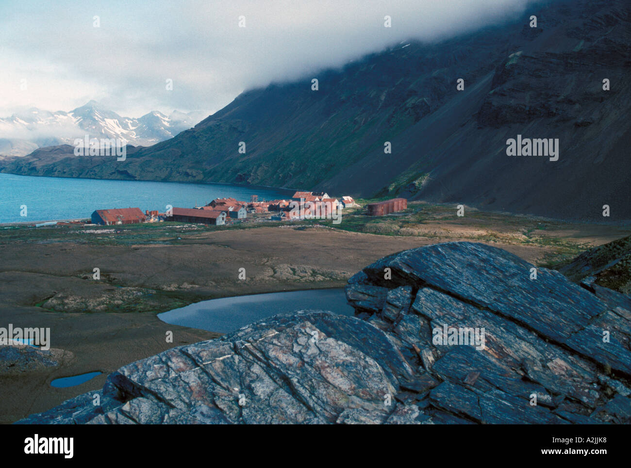 Antarctica, Sub-Antarctic Islands, South Georgia. View of research station - Stock Image