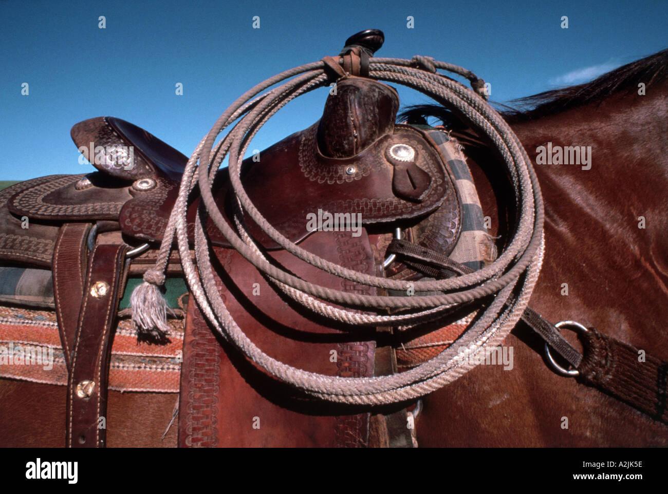 Western style saddle with lariat - Stock Image