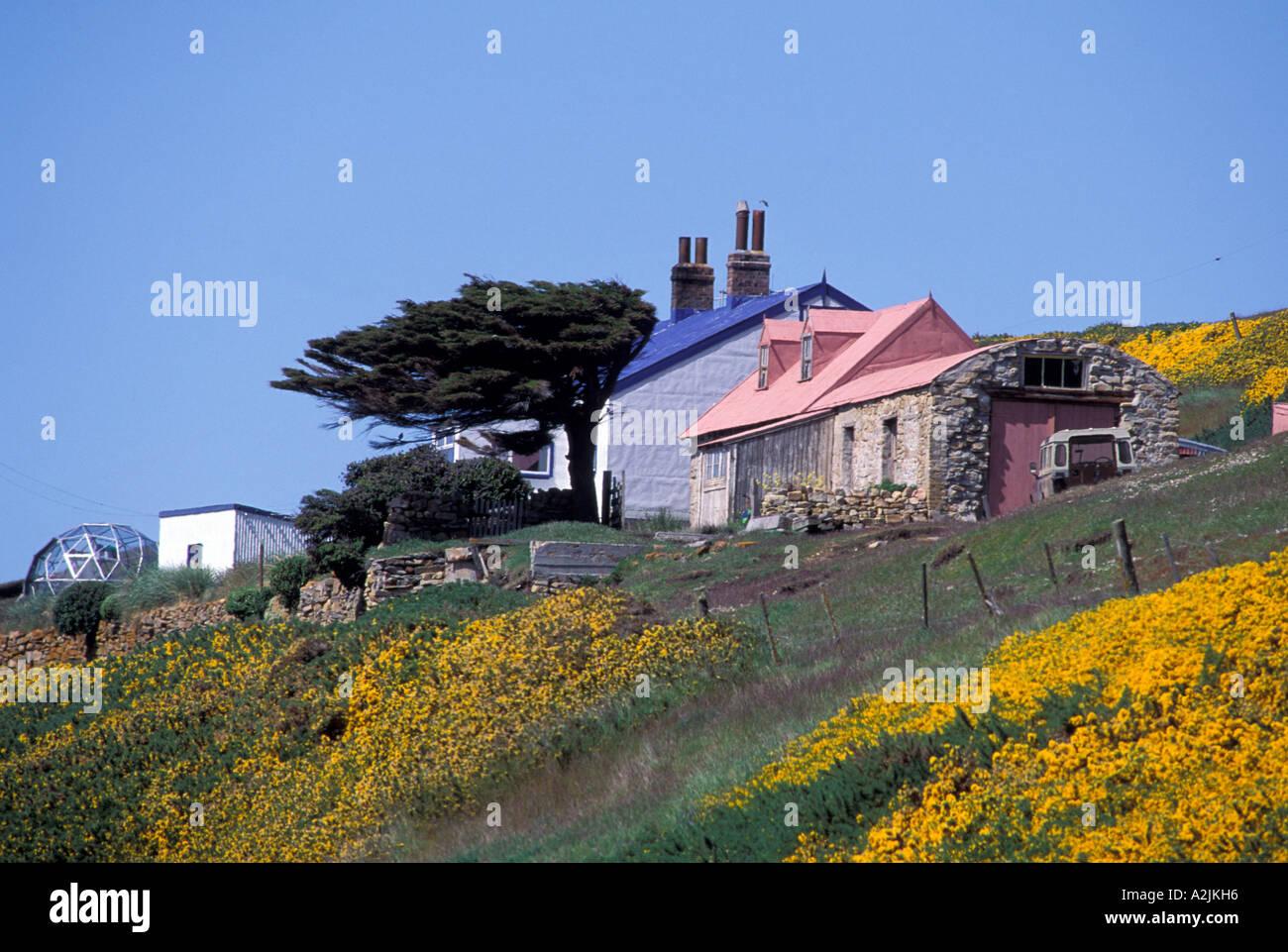 Antarctica, Sub-Antarctic Islands, South Georgia. Houses along coastline Stock Photo
