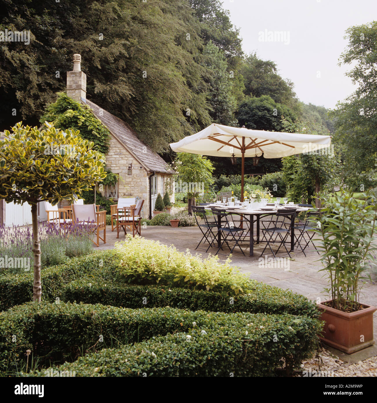 Parasol and table set in cottage garden with topiary hedge - Stock Image