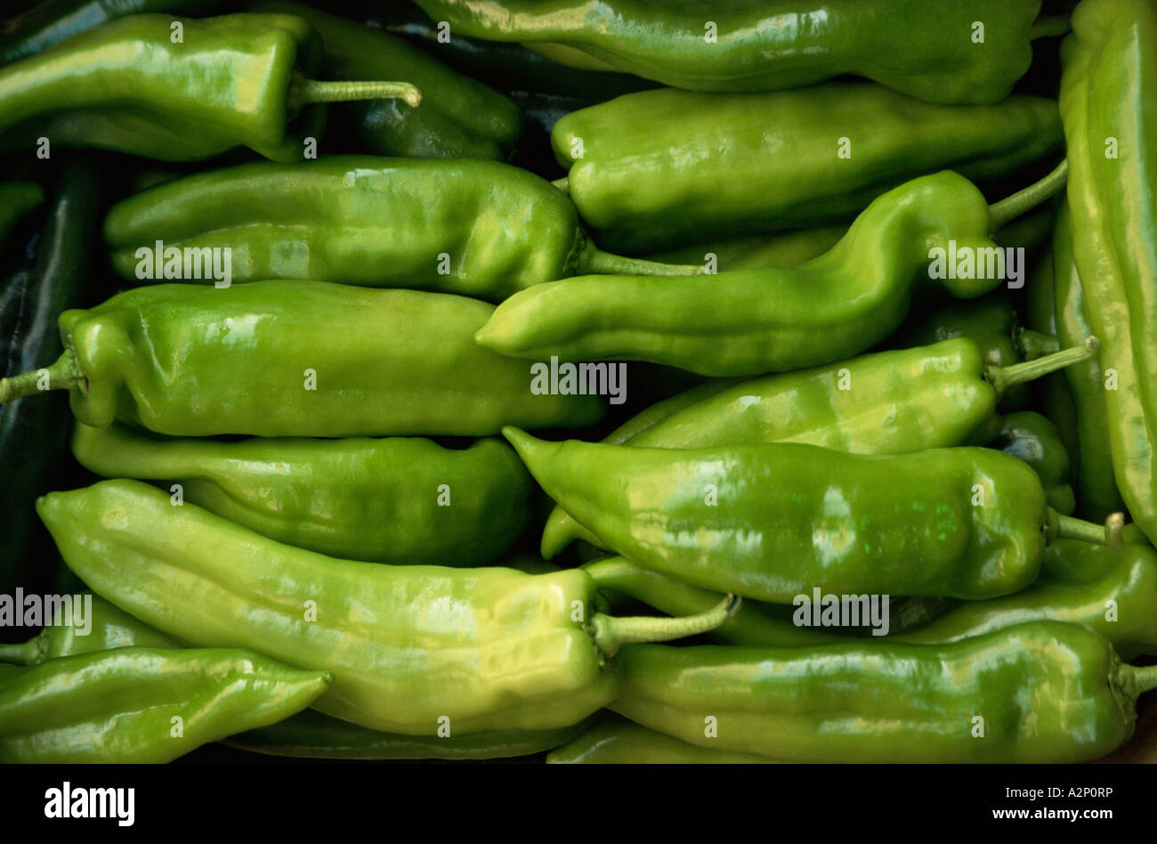 Green chilli peppers - Stock Image