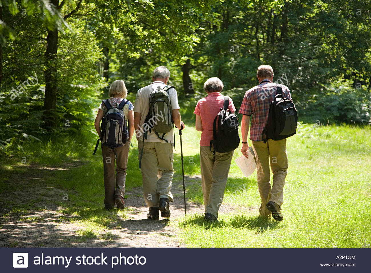 Ramblers walking in countryside - Stock Image
