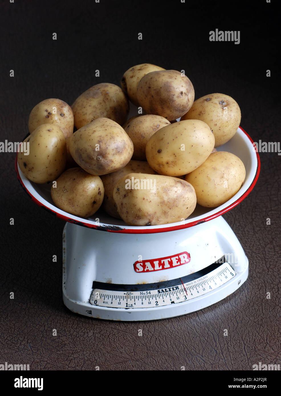 Potatoes variety Vivaldi on scales - Stock Image