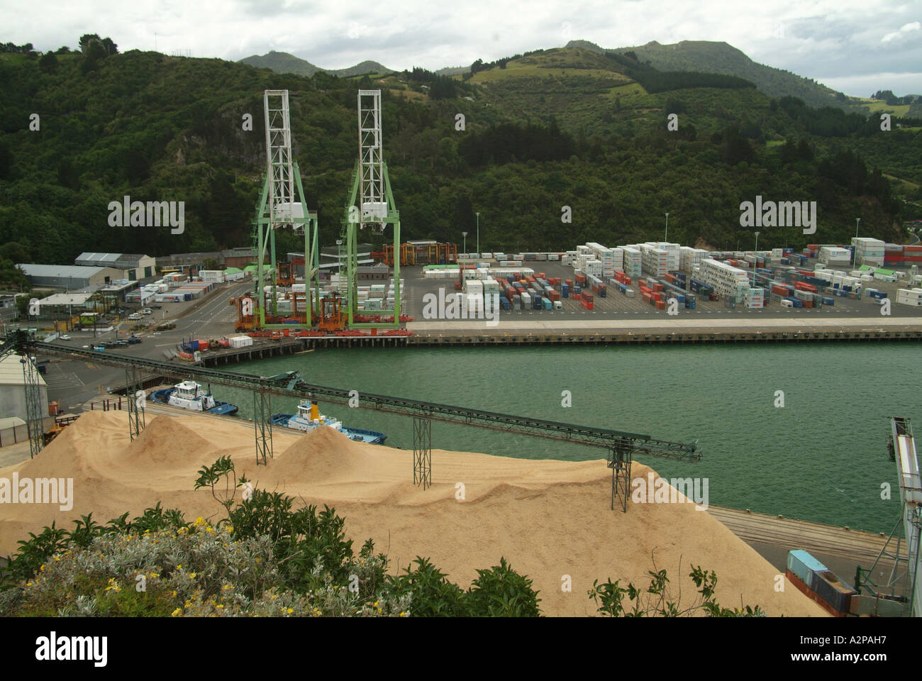 Woodchip pile and shipping containers on Otago docks, New Zealand - Stock Image