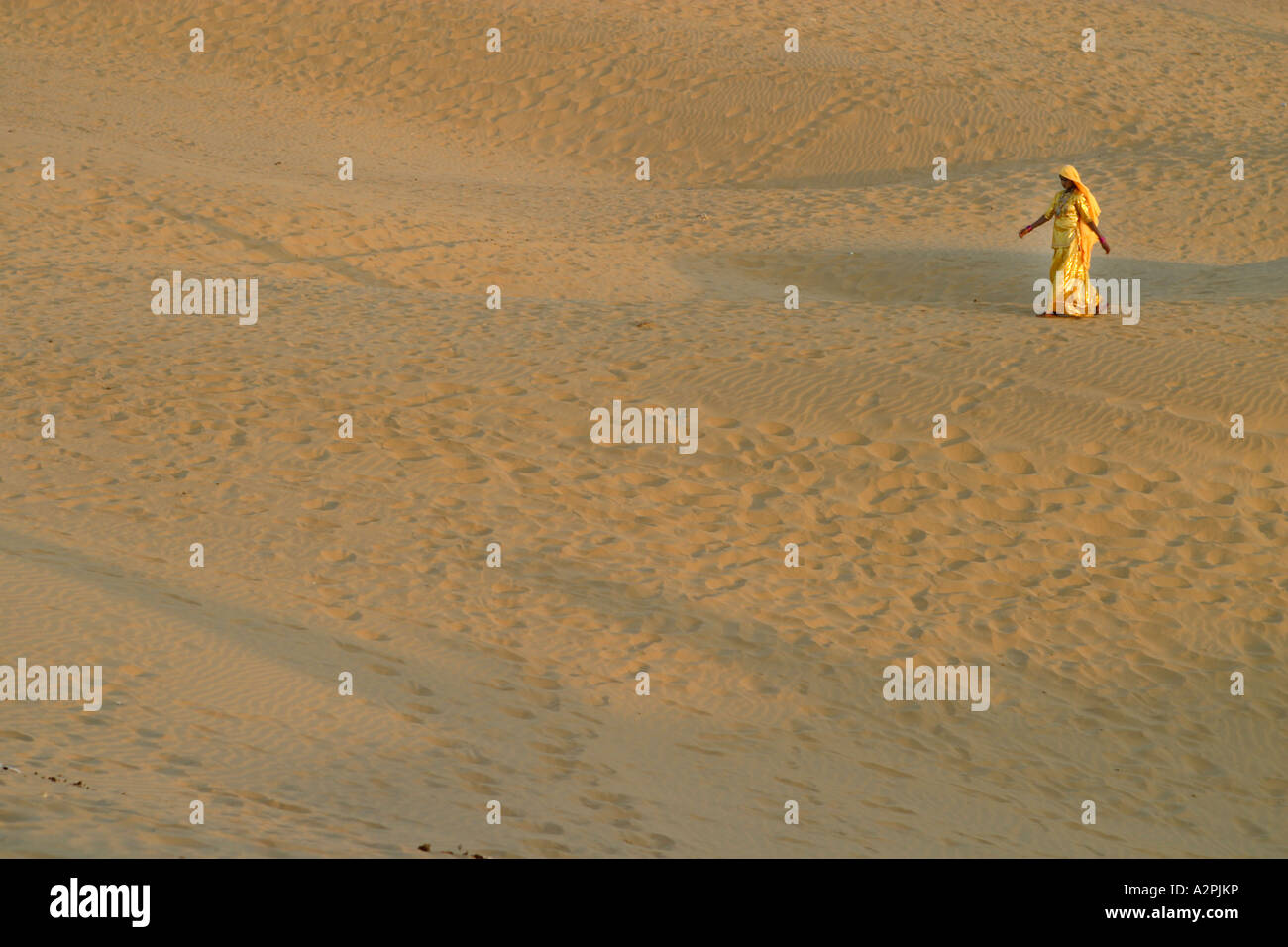 5e7d07a890 A lone woman in a traditional sari dress crosses sand dunes in the Thar  Desert of India. Horizontal.