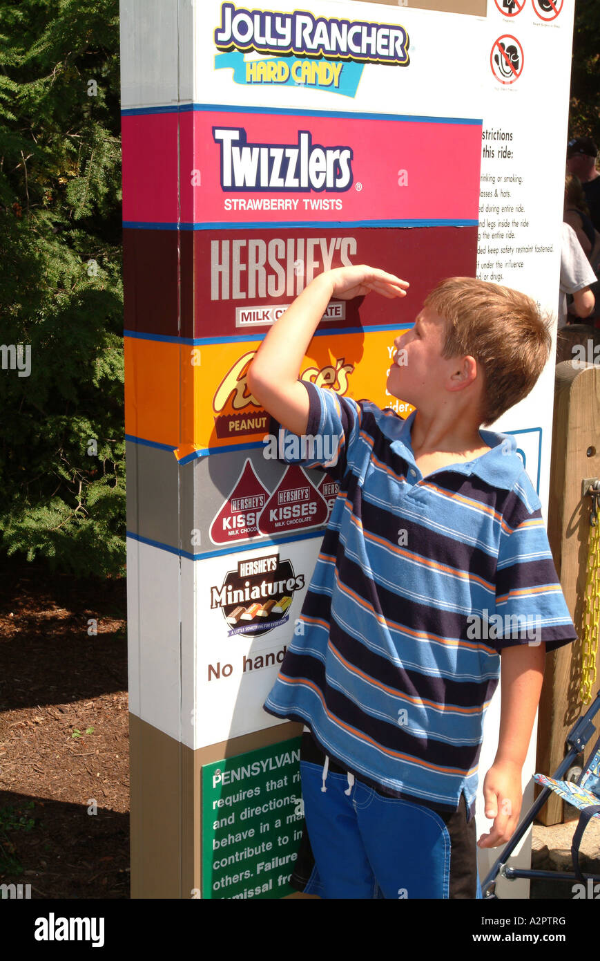 A boy seven 7 years old measures himself against the height Stock ...