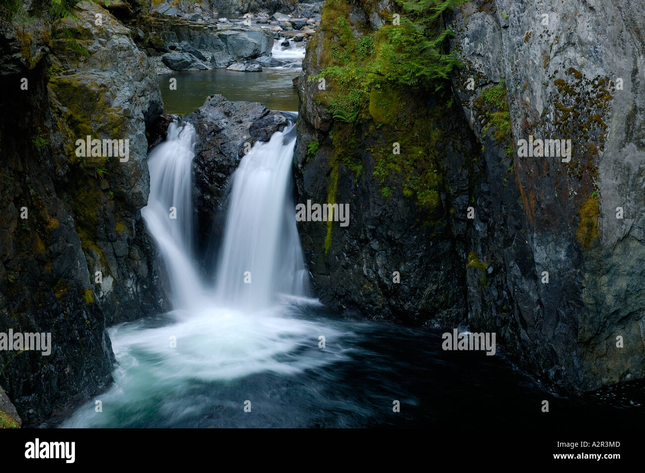 Englishman river Falls Provincial Park Vancouver Island BC Canada - Stock Image