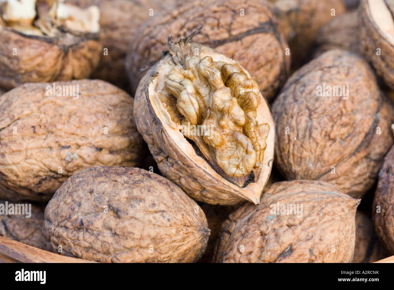 vente chaude en ligne 67247 34c85 Closeup of basket of walnuts with single fruit opened to ...