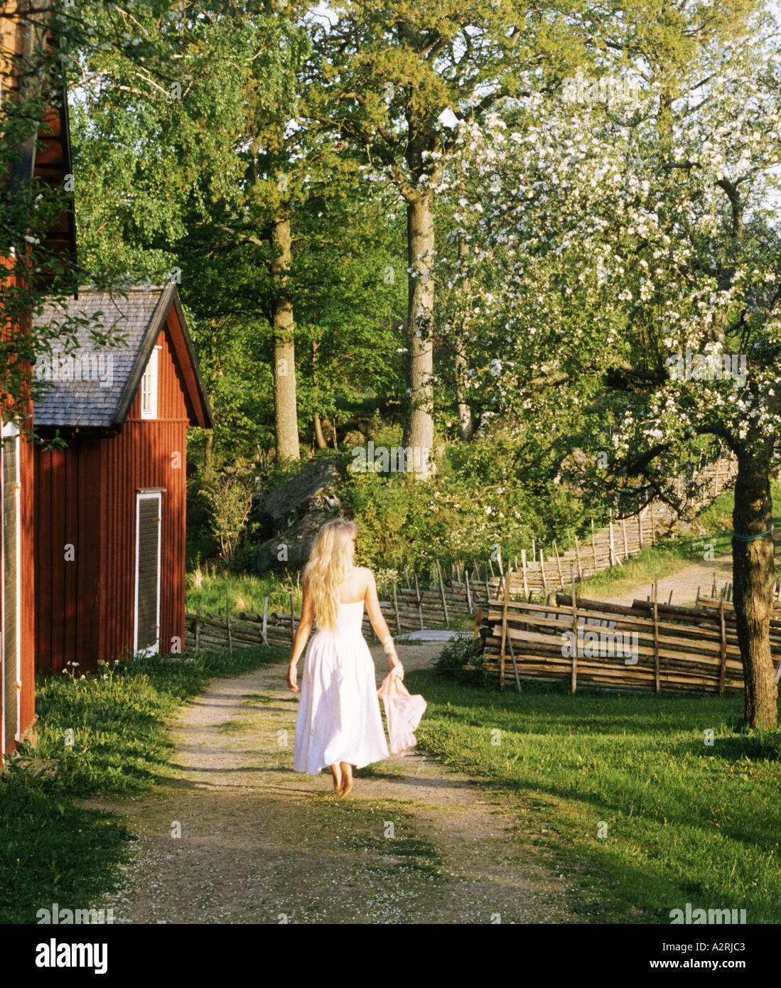 Blond woman in white dress on farm pathway in Småland, Sweden - Stock Image