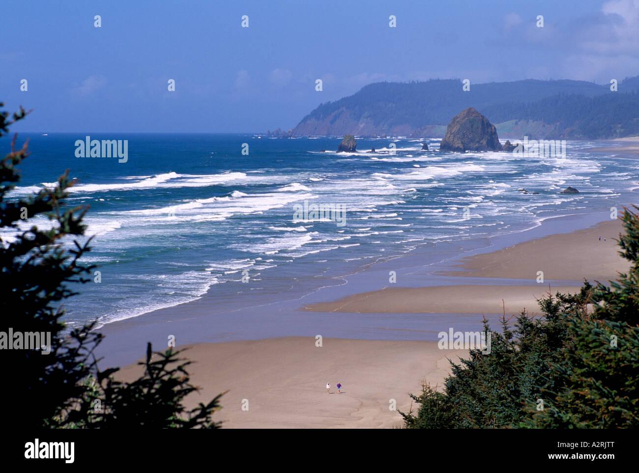 Ocean Beaches Pacific Northwest