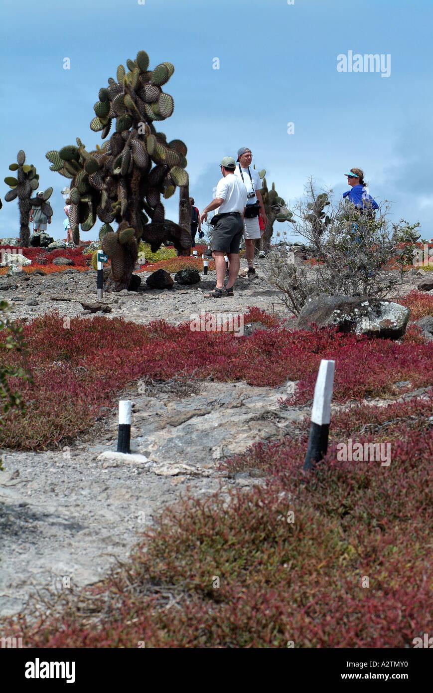 Plaza Island in the Galapagos Archipelago Stock Photo