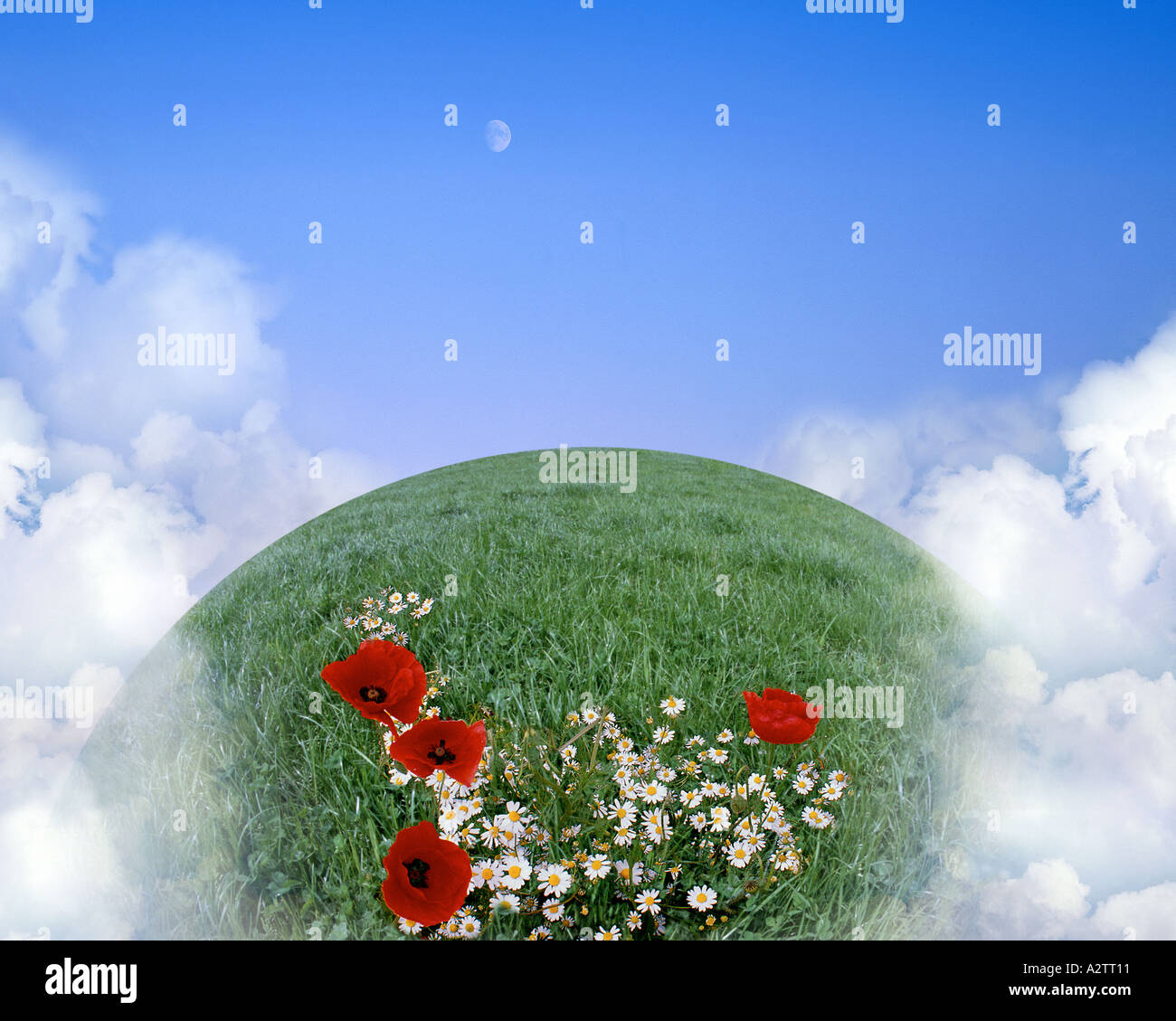 ENVIRONMENTAL CONCEPT: Global Warming - Stock Image