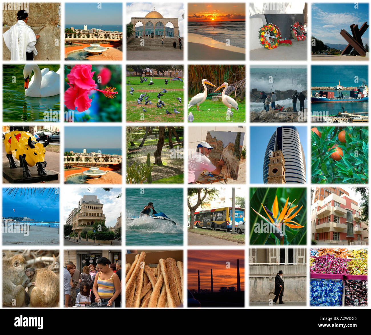 30 pictures of israel combined in a collage on a 5 by 6 array stock
