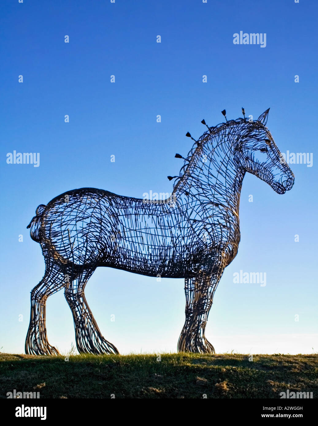 Andy Scott's magnificent Sculpture of a Clydesdale horse entitled Heavy Horse, Glasgow next to the M8 motorway, - Stock Image