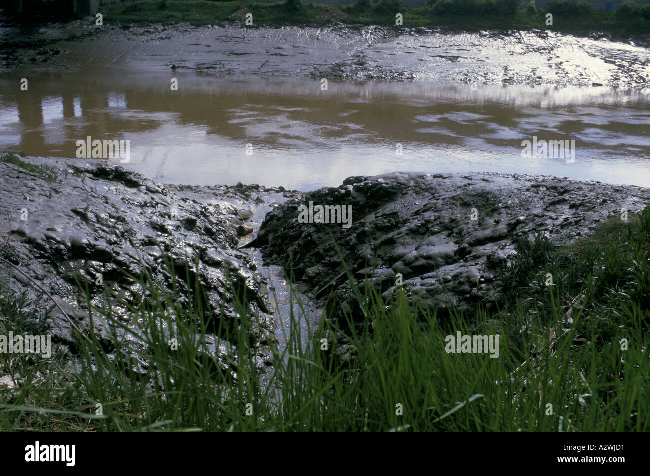 polluted river bank, London - Stock Image