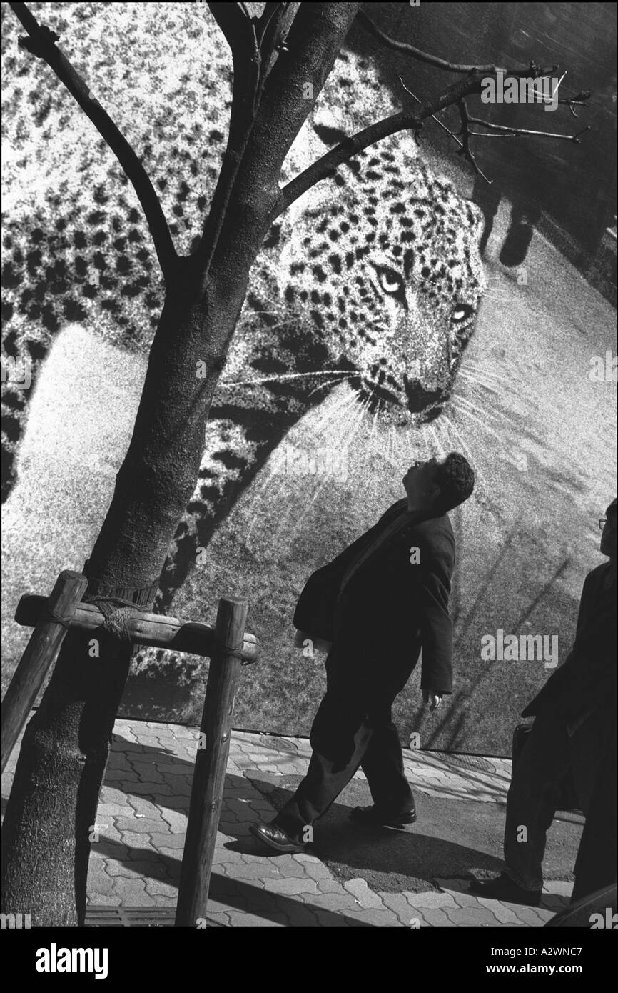 Japanese pedestrians pass a leopard on a billboard advertising Cartier jewellery, Ginza, Tokyo, Japan. Stock Photo