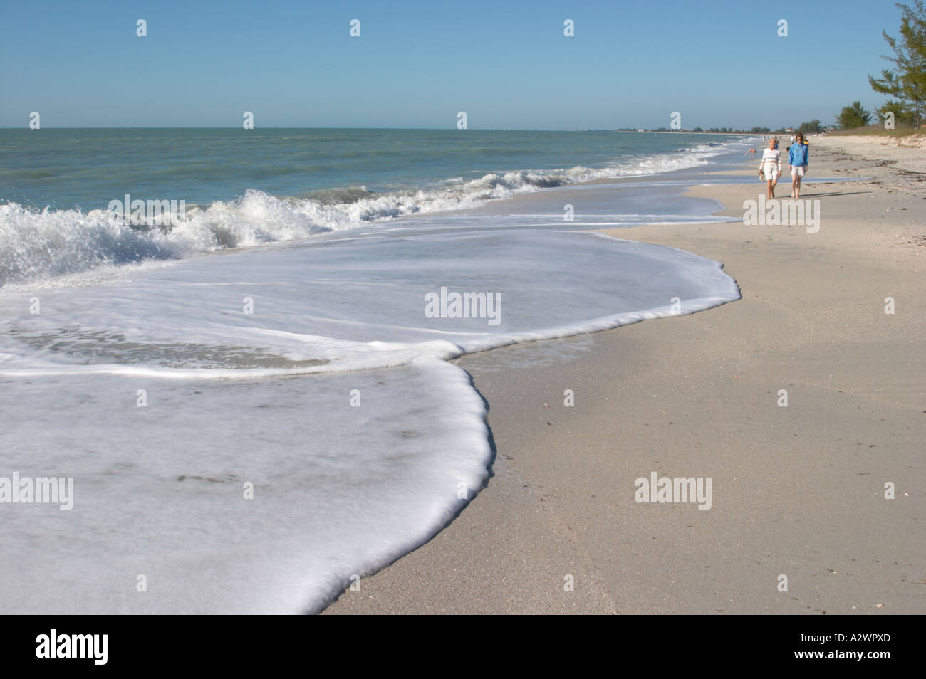 nokomis beach casey key gulf of mexico florida stock photo. Black Bedroom Furniture Sets. Home Design Ideas