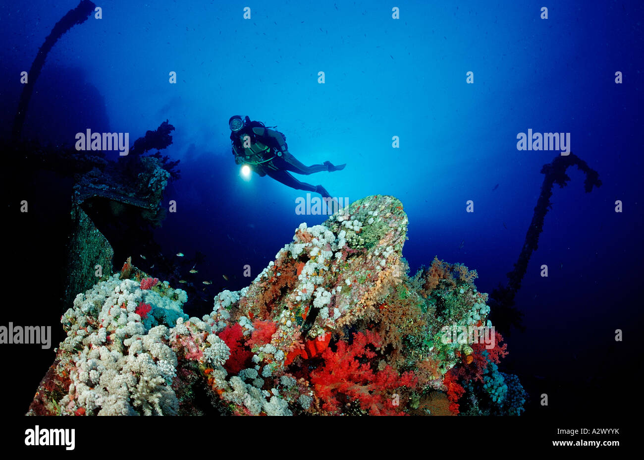 Scuba diver exploring shipwreck Numibia Egypt Africa Red Sea - Stock Image