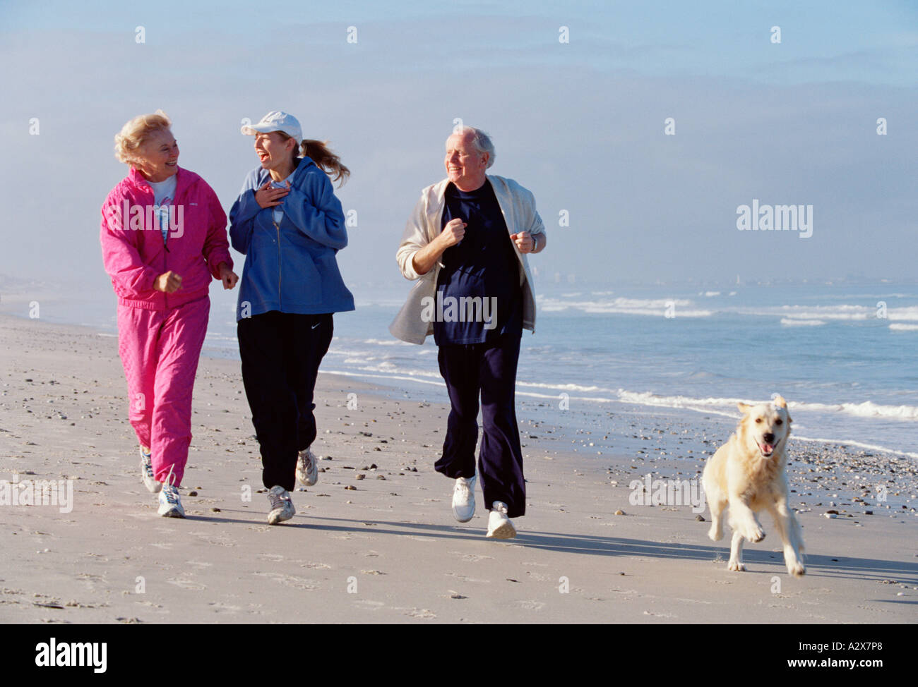 Adult group of three people with their dog running along a beach. Stock Photo