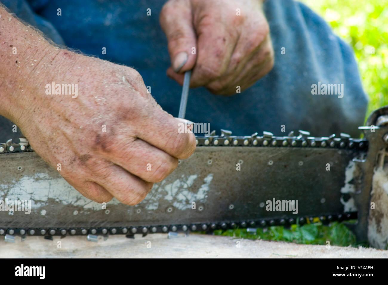 Sharpening Saw Stock Photos & Sharpening Saw Stock Images