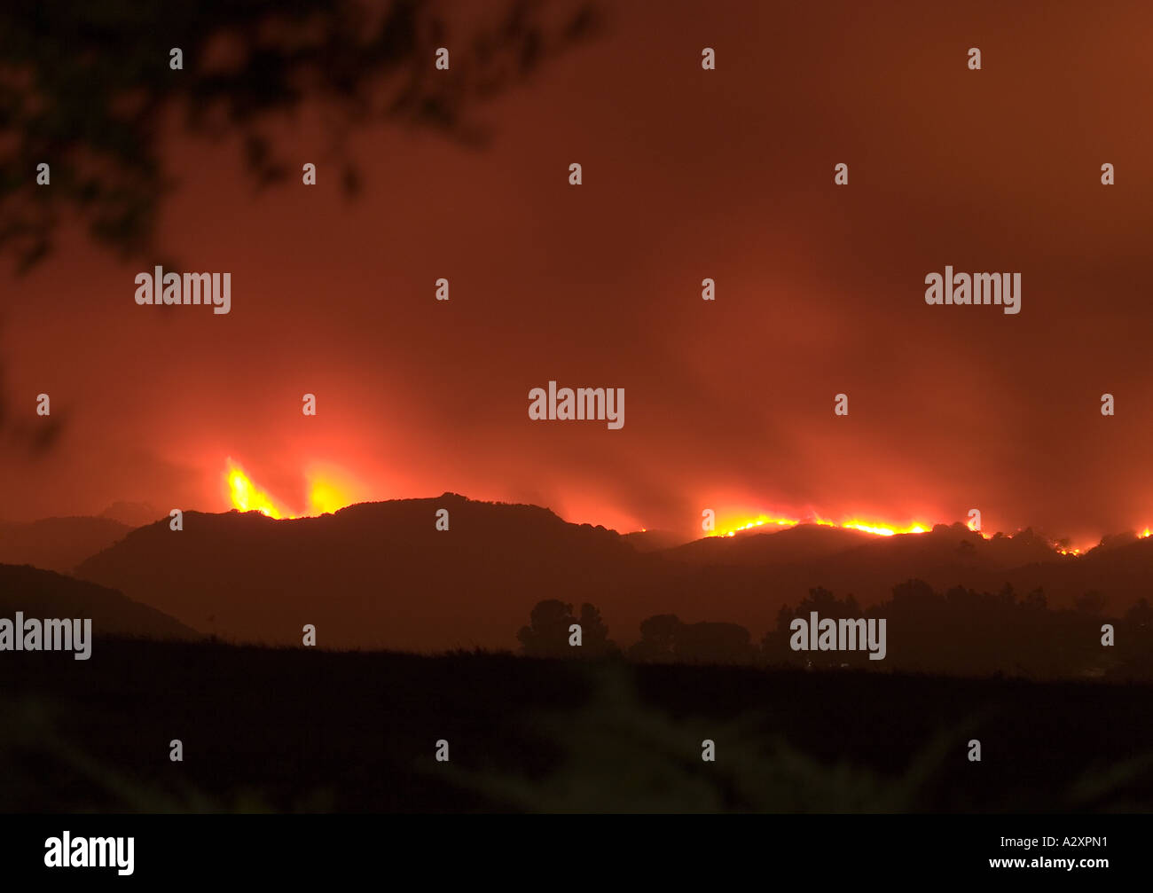 View of the Topanga Wildfire September 2005 from a residential area of West Hills California - Stock Image