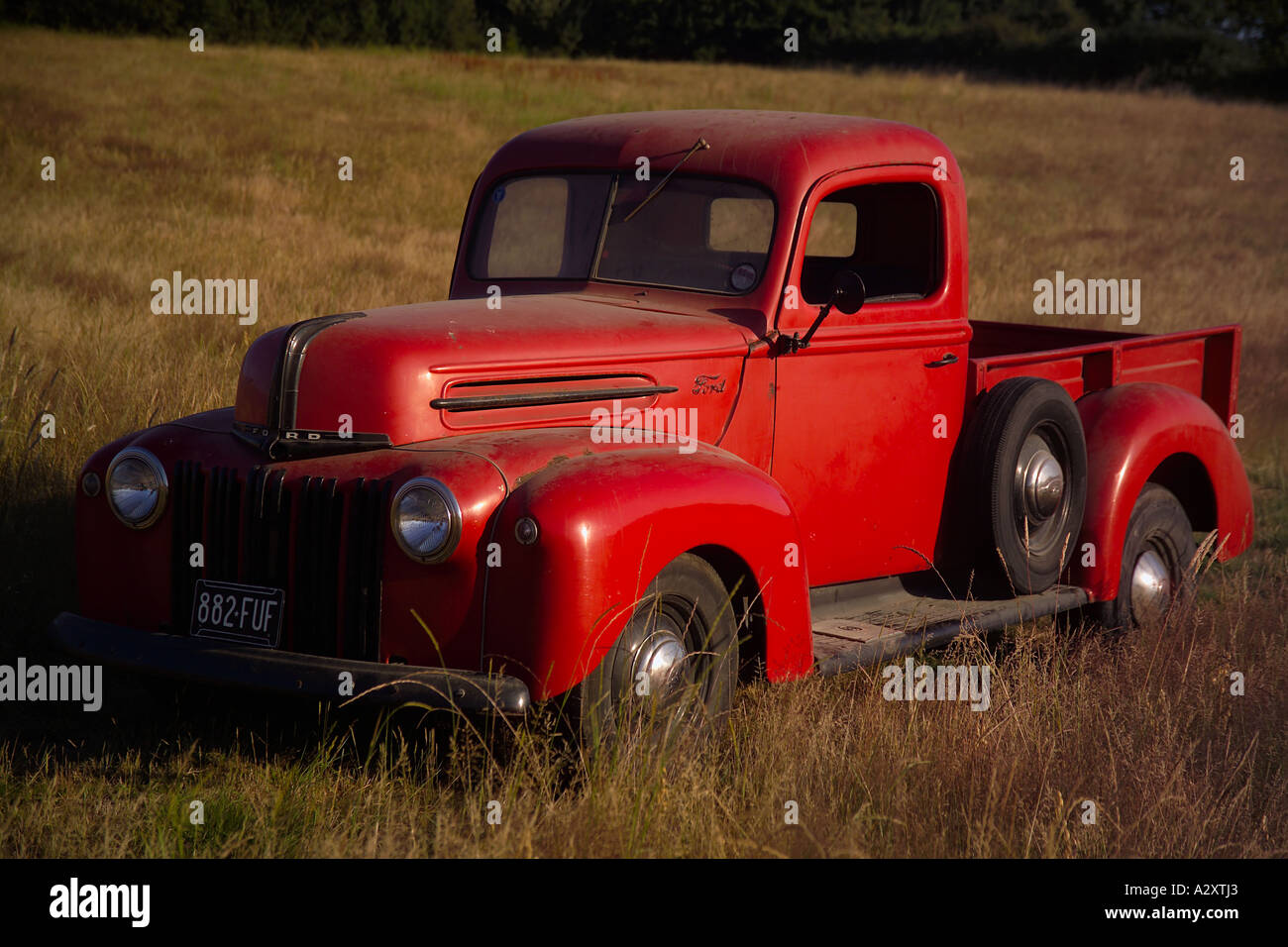 Vintage Red Ford Pick Up Truck in Wheat Field Transport Wales Stock ...