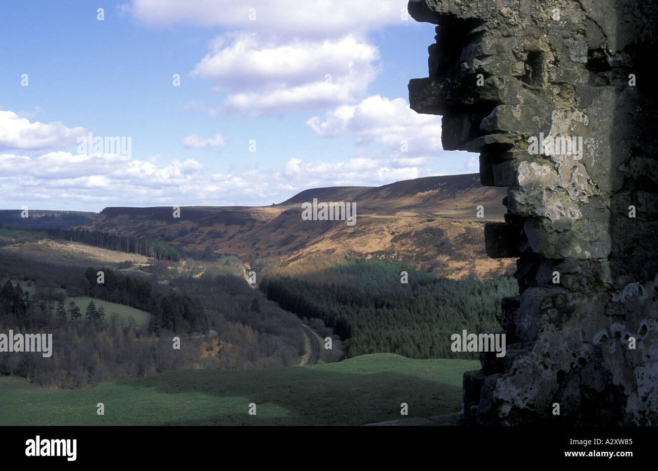 Newton Dale from the ruins of Skelton Tower - Stock Image