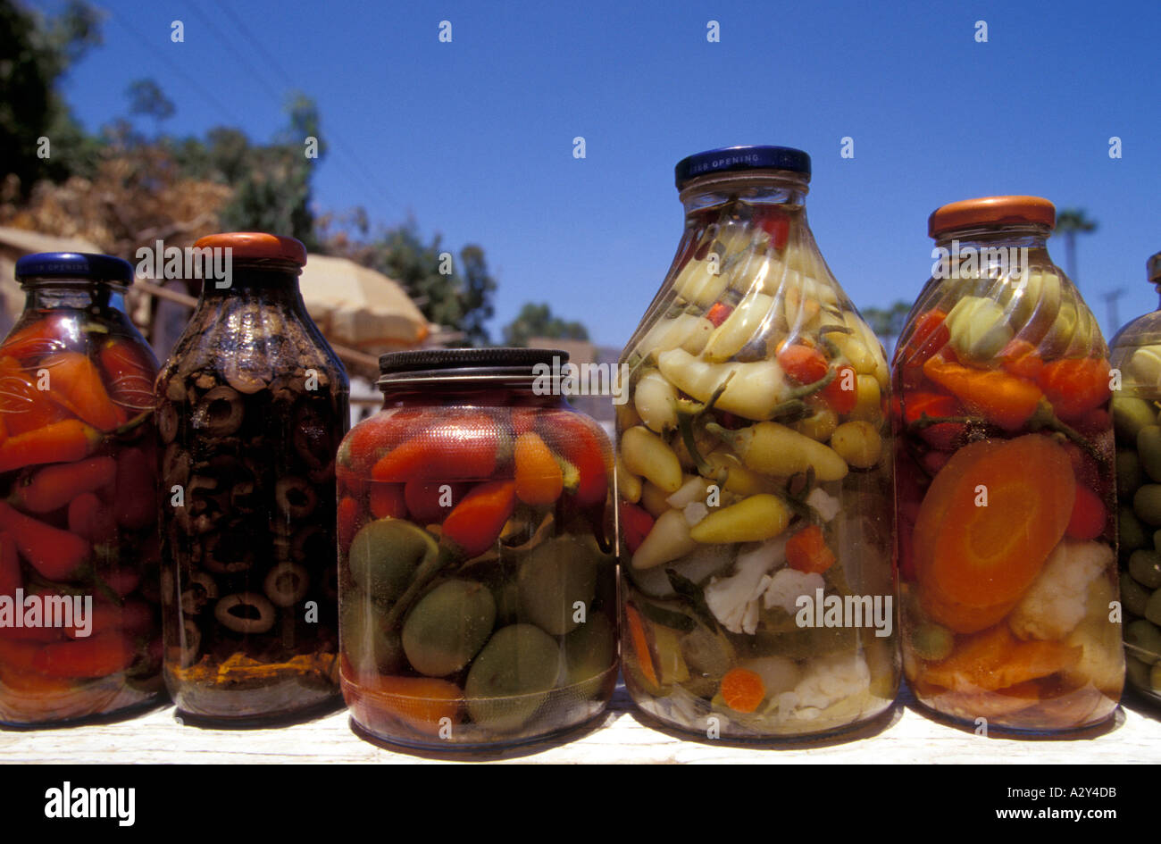 Mixed pickles - Stock Image