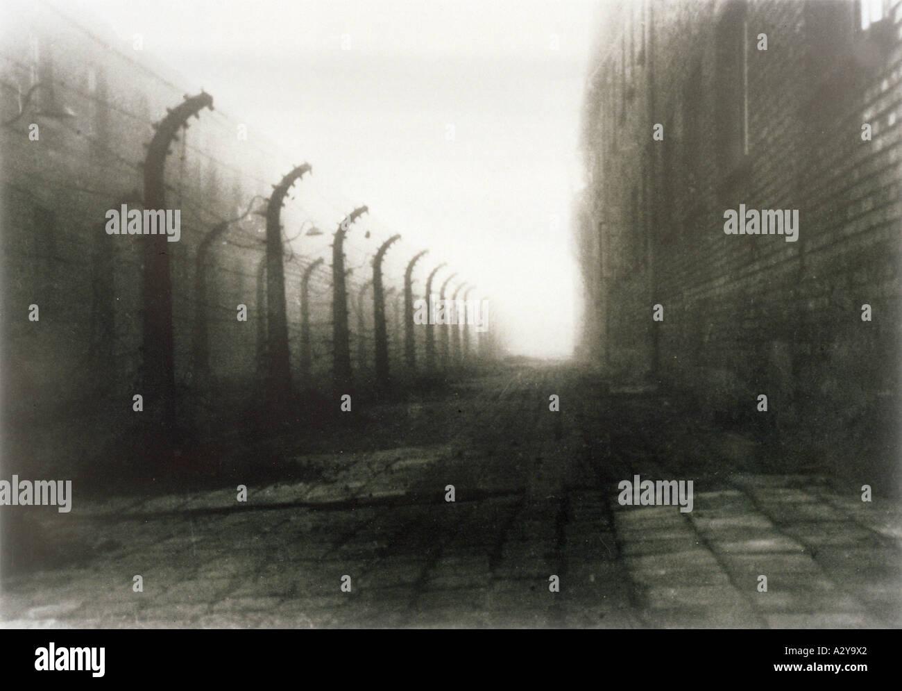 Wire At Auschwitz - Stock Image