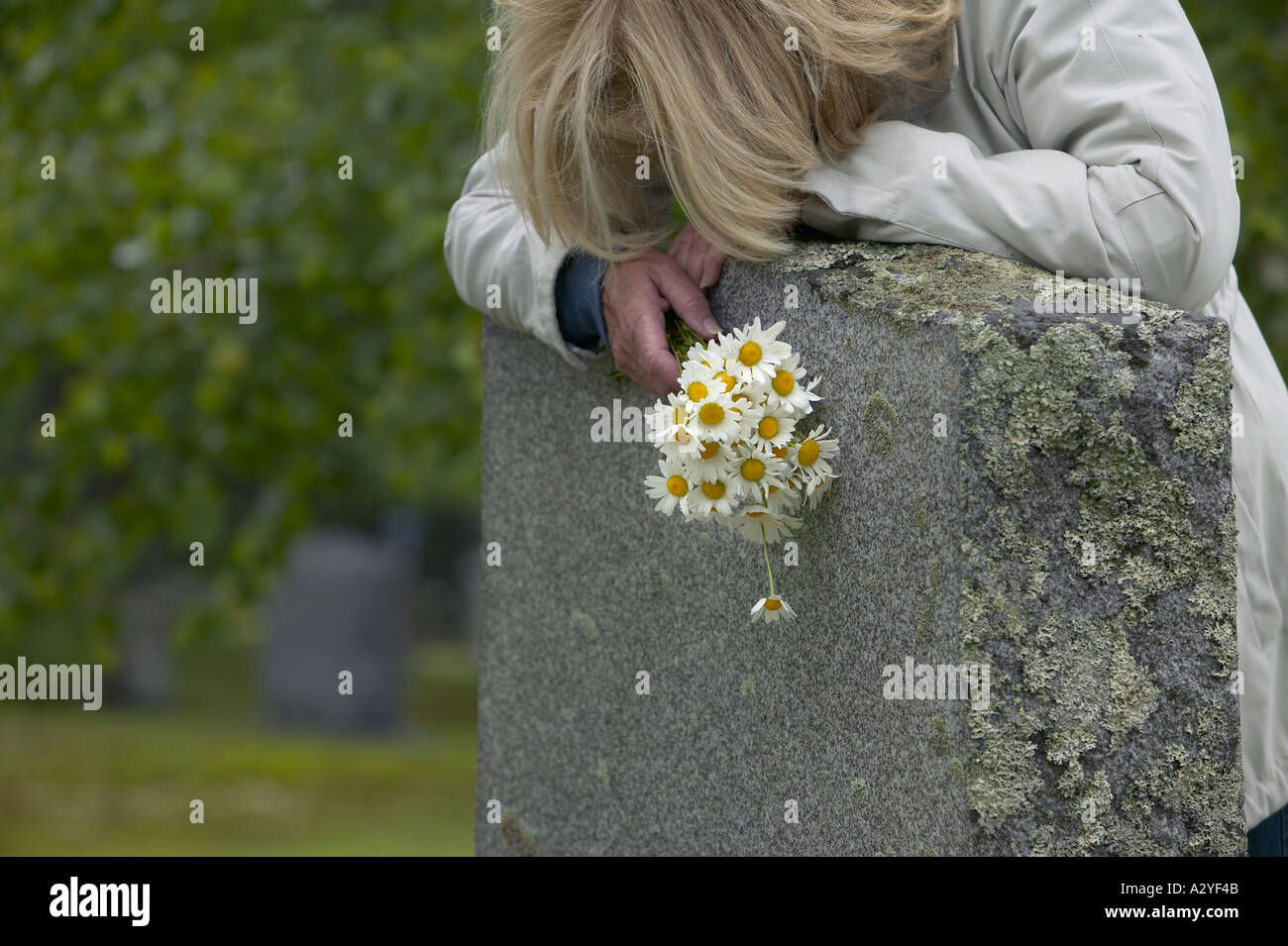 Late 50s Caucasian woman with daisies lays head on granite grave stone marker - Stock Image