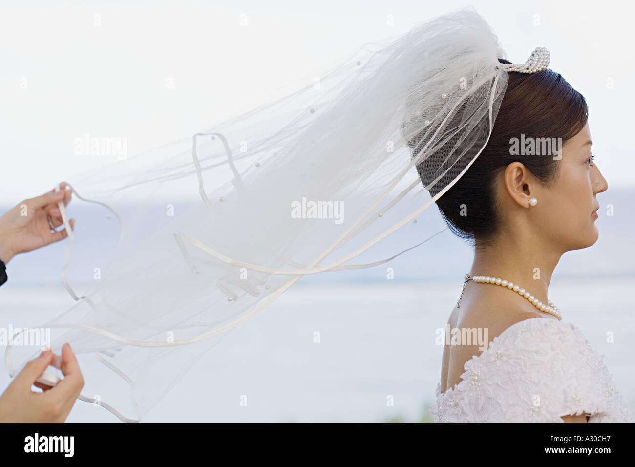 Hands holding bridal veil - Stock Image