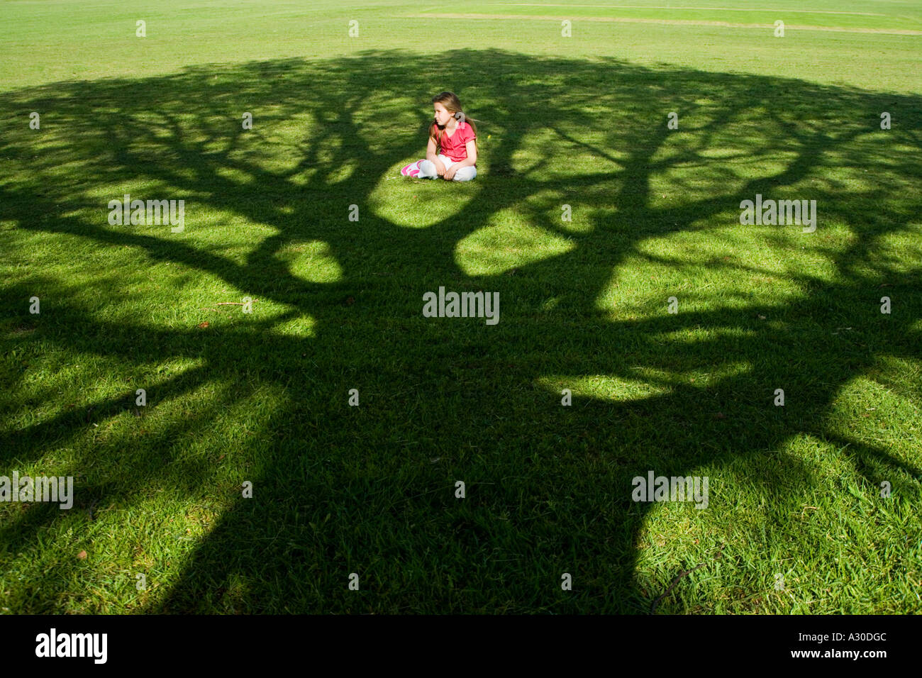 Young girl (7-9) sat in shadow of tree - Stock Image