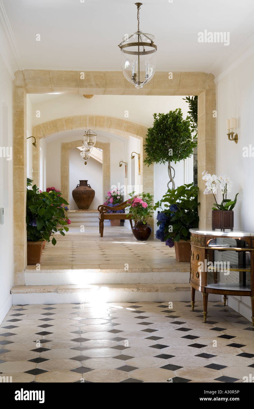 Houseplants and cabinet in tiled hallway of French villa - Stock Image